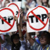 TPPの未来示す中南米の経験
