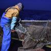隠れて進む漁業権の民間開放 9月臨時国会で法改定の動き
