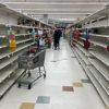 食料輸出制限の動き 「食料不足招く」とFAO等が警告