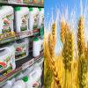 抗生物質が効かない耐性菌の氾濫 食と健康を脅かす遺伝子組み換えと農薬の弊害