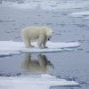地球温暖化の脅威煽る言説の結果は? ことごとく外れた「2020年まで」の予測