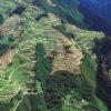東日本豪雨災害調査報告 宮城県丸森町の山を歩いてわかったこと 自伐型林業推進協会代表理事 中嶋健造